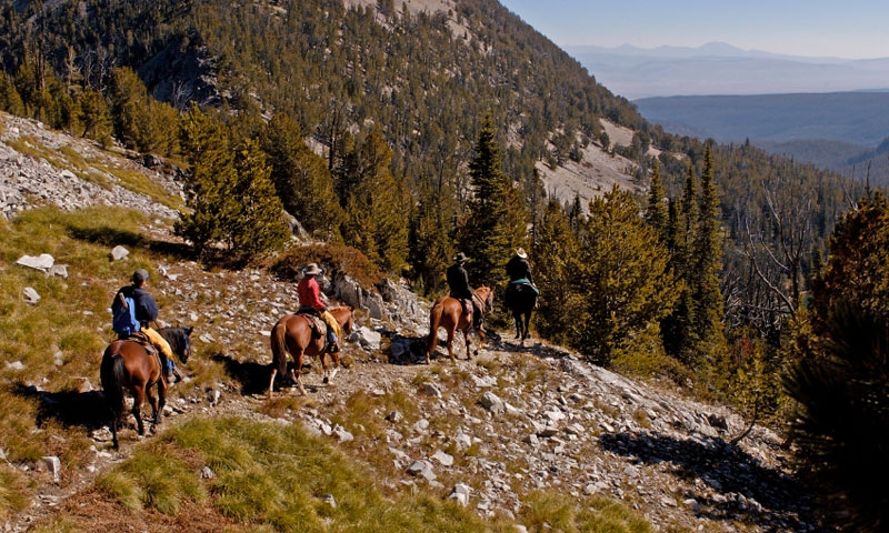 Horseback Riding in the Bitterroot Mountains