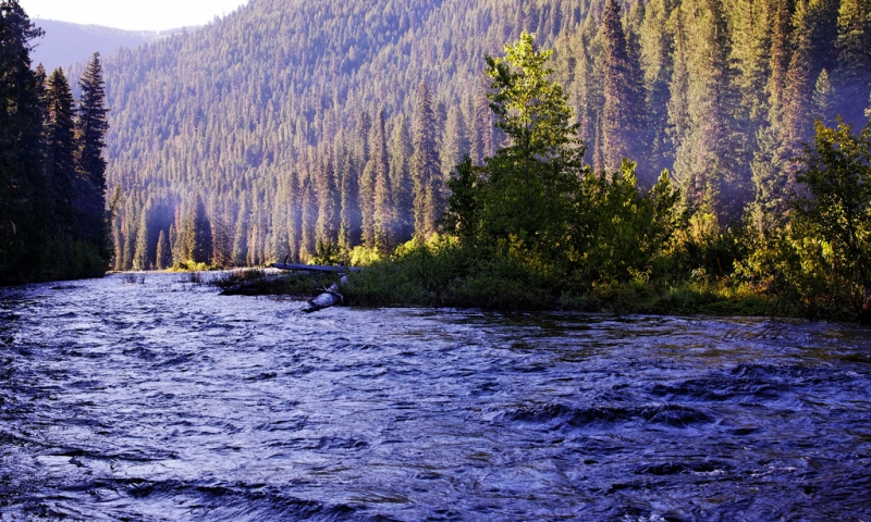 Lochsa River Montana Fly Fishing Camping Boating Alltrips
