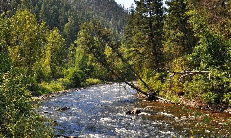 All Seasons Rv >> Rock Creek Montana Fishing, Camping, Rafting - AllTrips