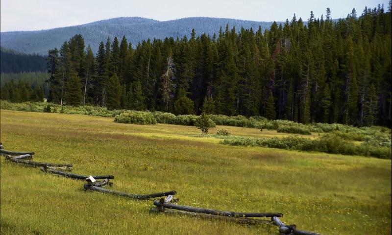 Deerlodge National Forest