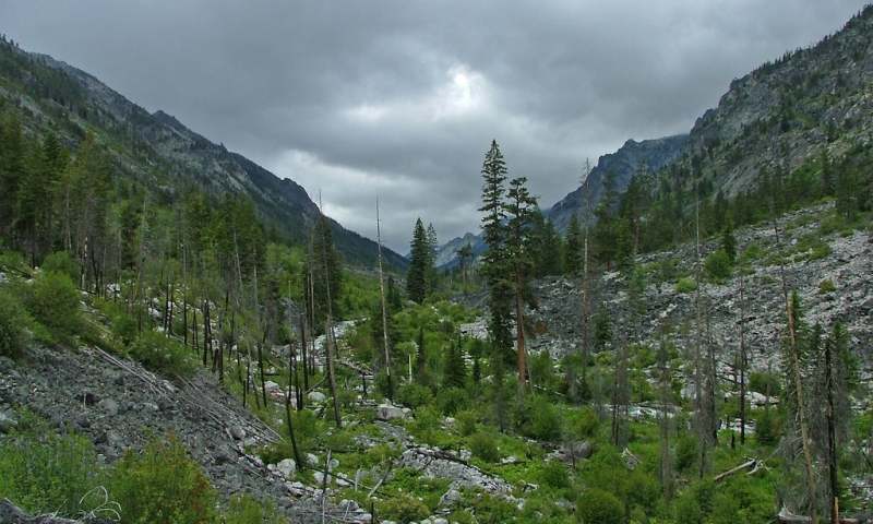 Montana Blodgett Canyon