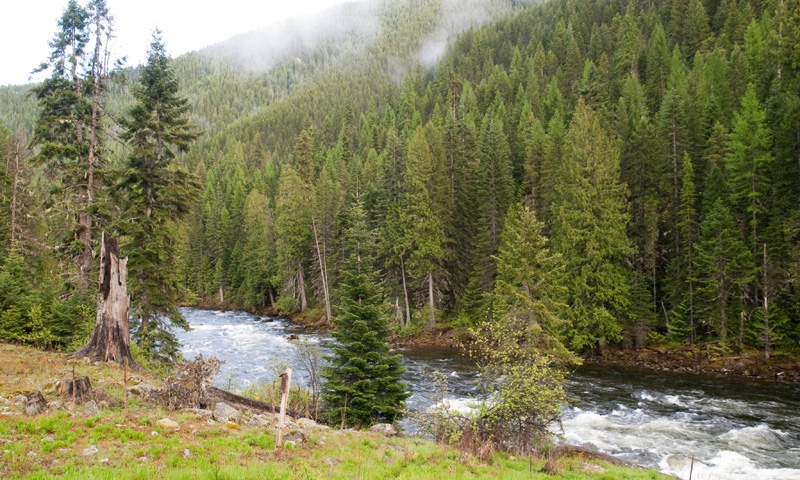 The Middle Fork of the Clearwater River along Lolo Pass
