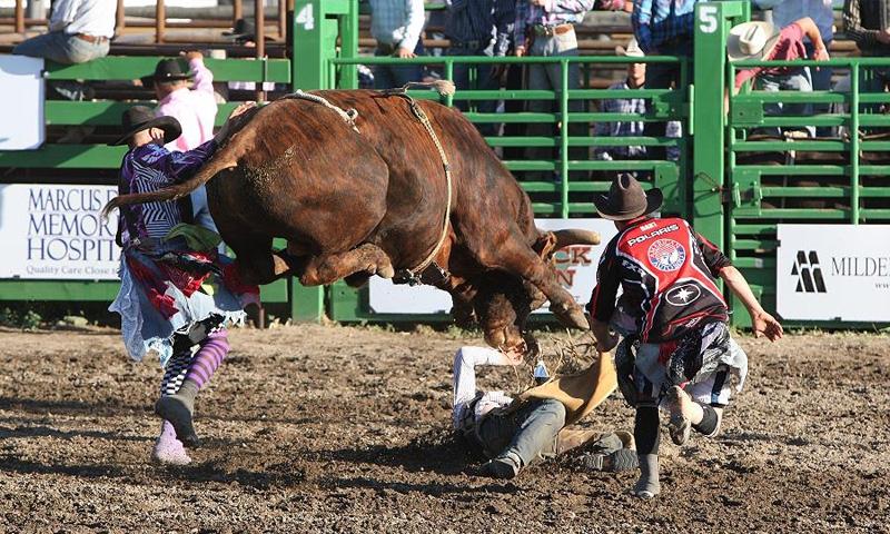Ravalli County Fair Hamilton